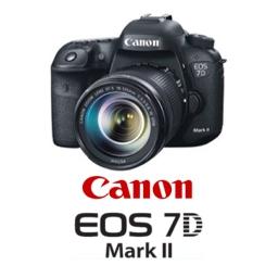 Manuale Istruzioni Canon Eos 7d Mark Ii Download Libretto Pdf Italiano